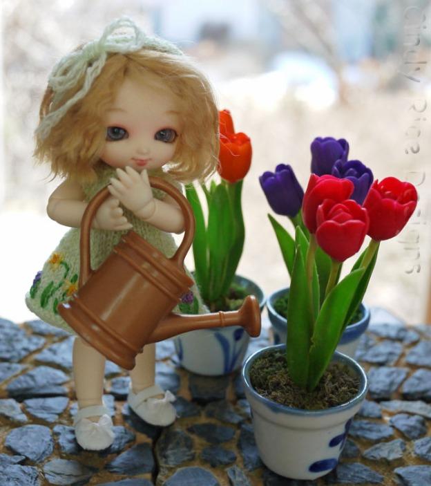 spring garden 331