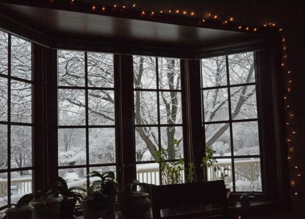 snowfall 245