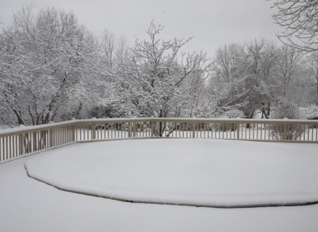 snowfall 251