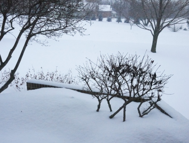 march snow 720