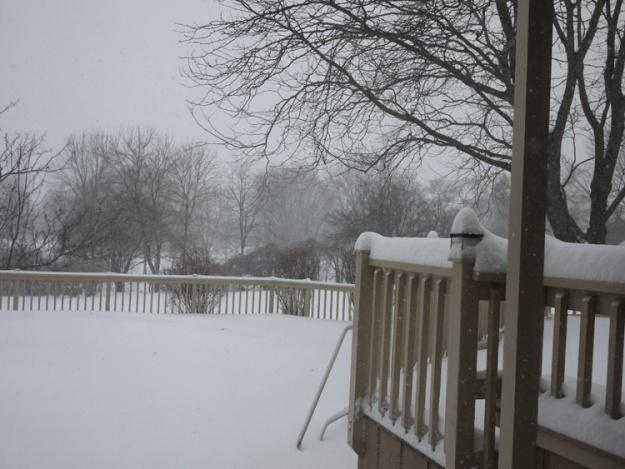 snow 946