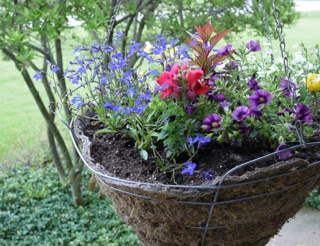 flower basket 359