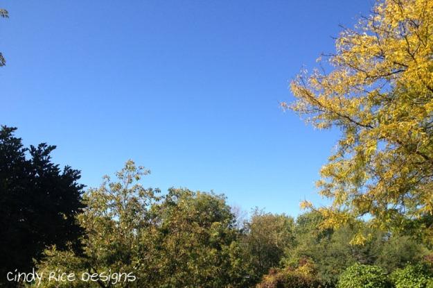 blue sky 2106