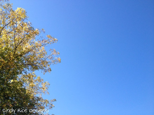 blue sky 2107
