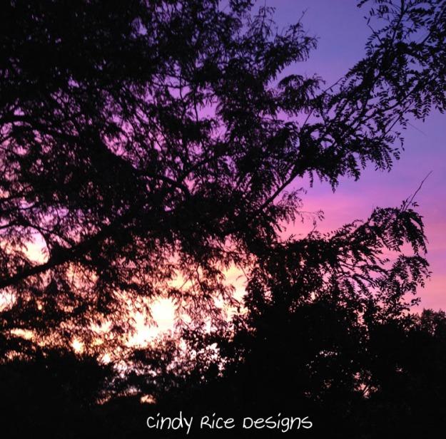 fall sunset 2086
