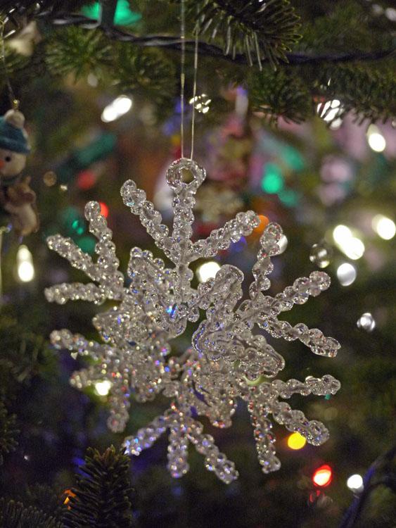 2015 ornaments 722