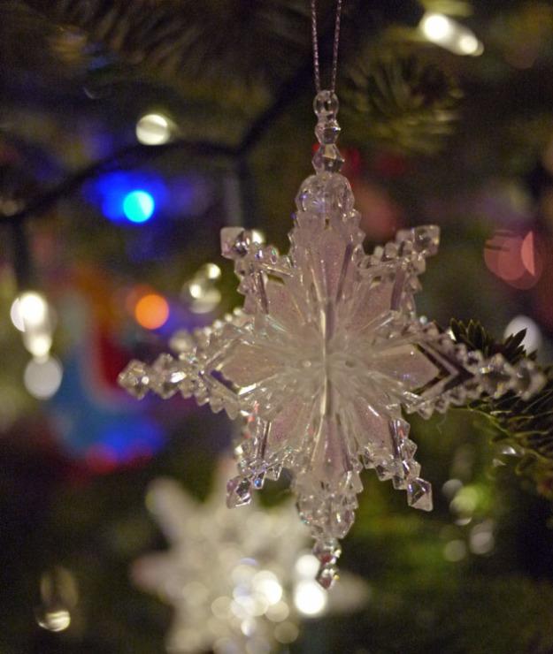 2015 ornaments 724
