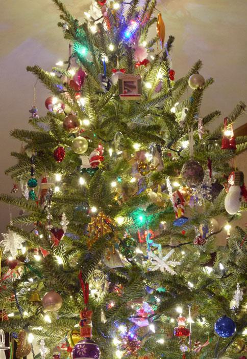 2015 tree 814