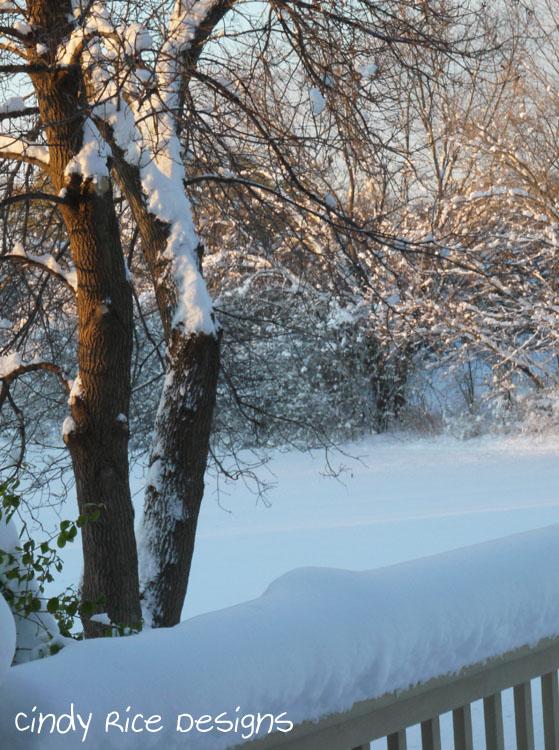 mid november cold 572