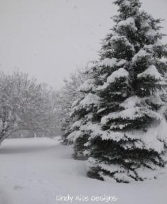 mid november snow 503
