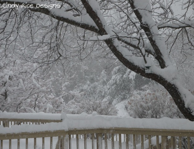 mid november snow 507