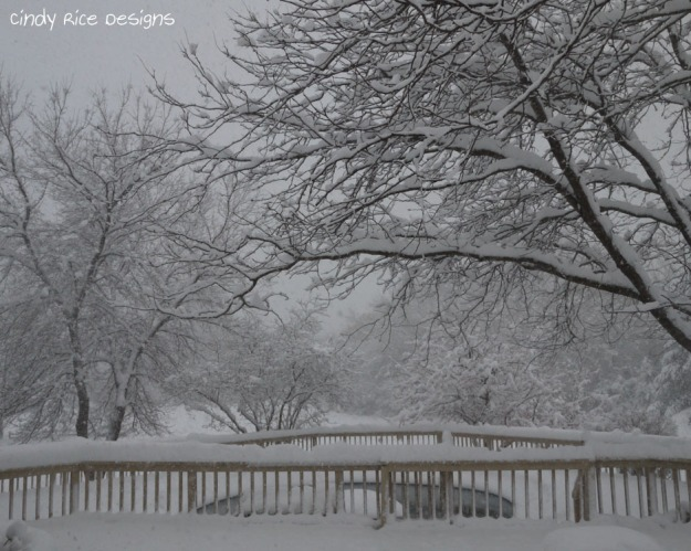 mid november snow 508