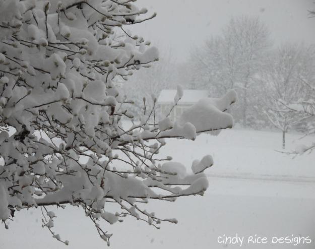 mid november snow 514