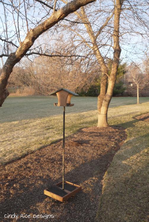 bird feeder 637