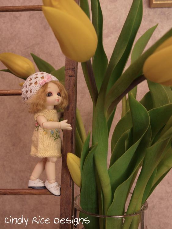 sugar tulips 056