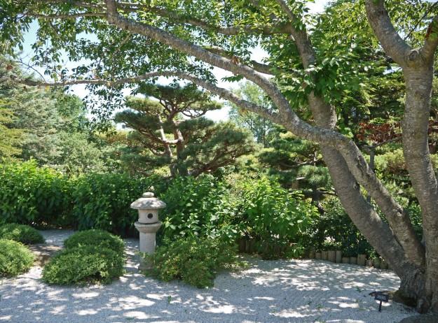 japanese garden 0051
