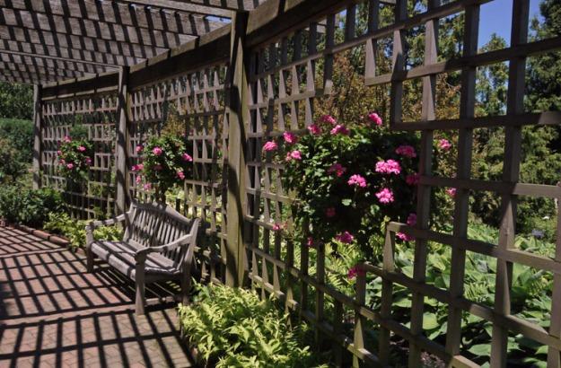 rose garden trellis 940