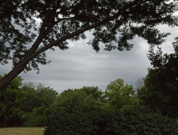 storm 208