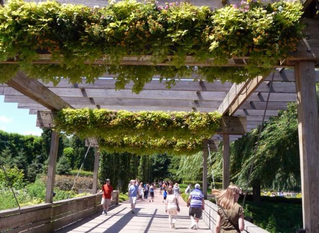 walkway bridge 894