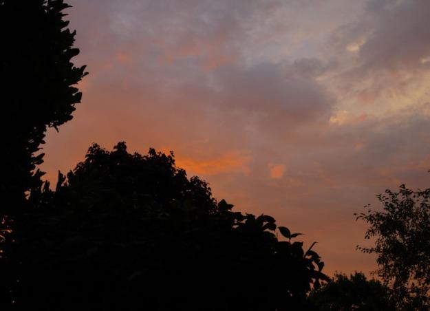august sunrise 027