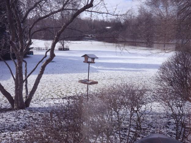 march-snow-585