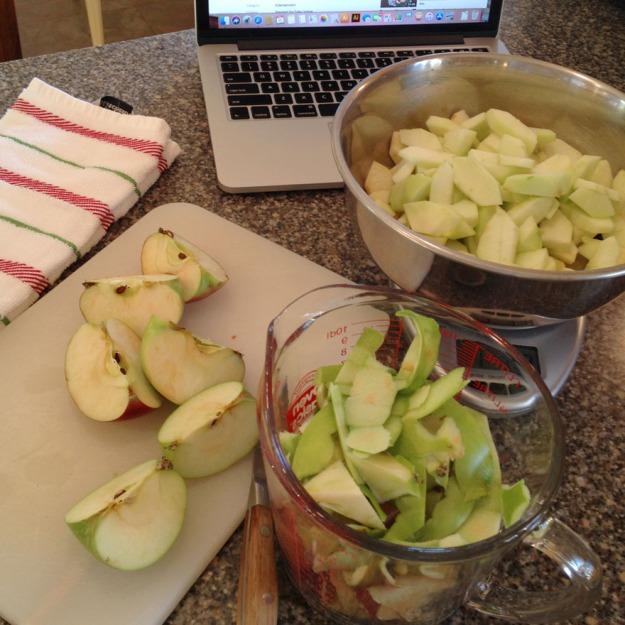 apple crumble 3623