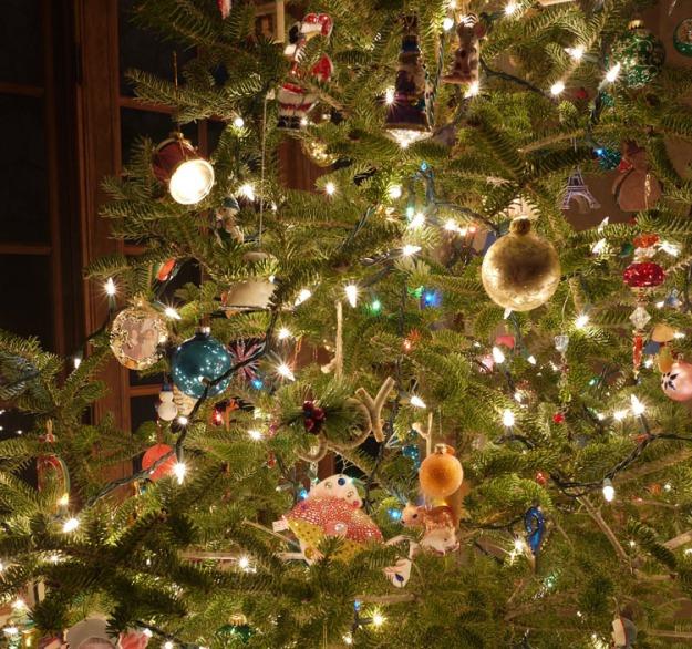 christmas tree 2017 330