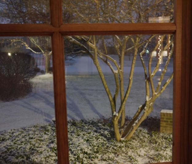 snowy morning 339