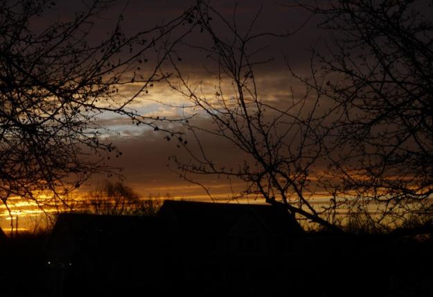 sunrise 388