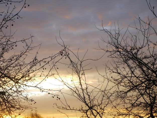 sunrise 390
