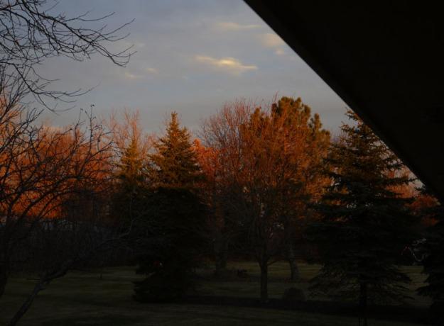 sunrise 395