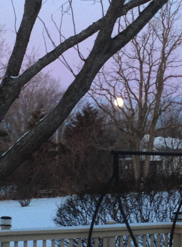 winter full moon morning 3738