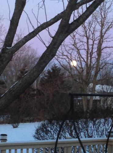 winter full moon morning 3738