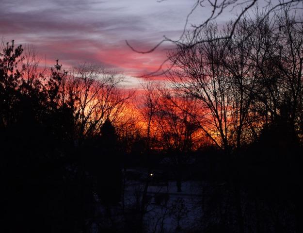 winter sunset 441