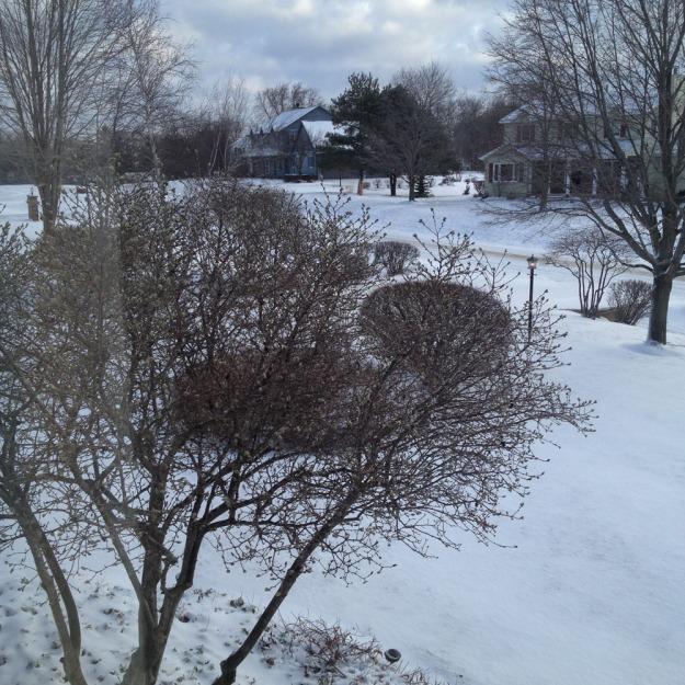 april snow 2018 4010