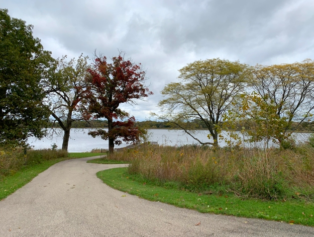 2019 fall hastings forest preserve 4655