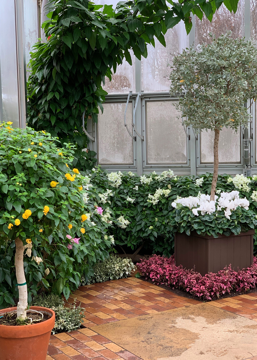greenhouse 4786