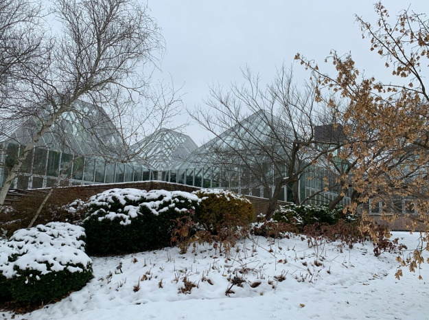 greenhouses snow 4783