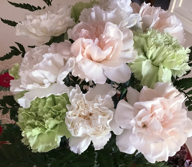 2019 carnations 0929