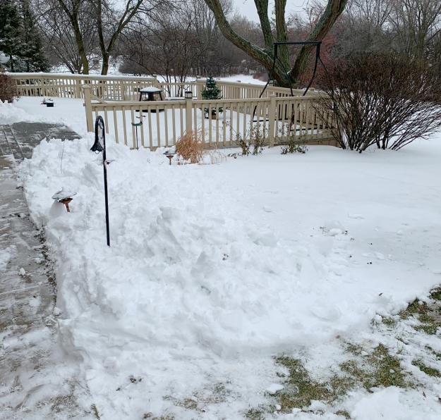 2020 snow 5139
